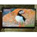 Телевизор BBK 50LEX8161UTS2C 4K Ultra HD на Android, 2 пульта, HDR, премиальная аудио система в Зелёном фото 5